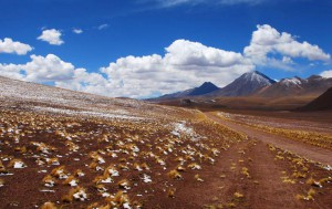 alto-atacama-mountainbiking